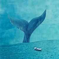 小海豚_51661419